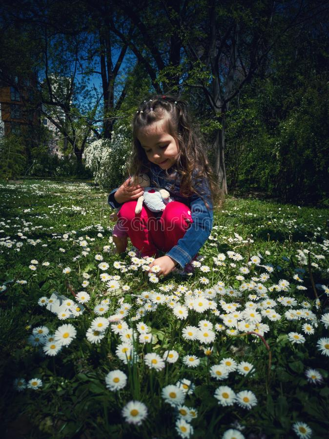 Happy smiling little girl with curly hair among the daisy field royalty free stock image