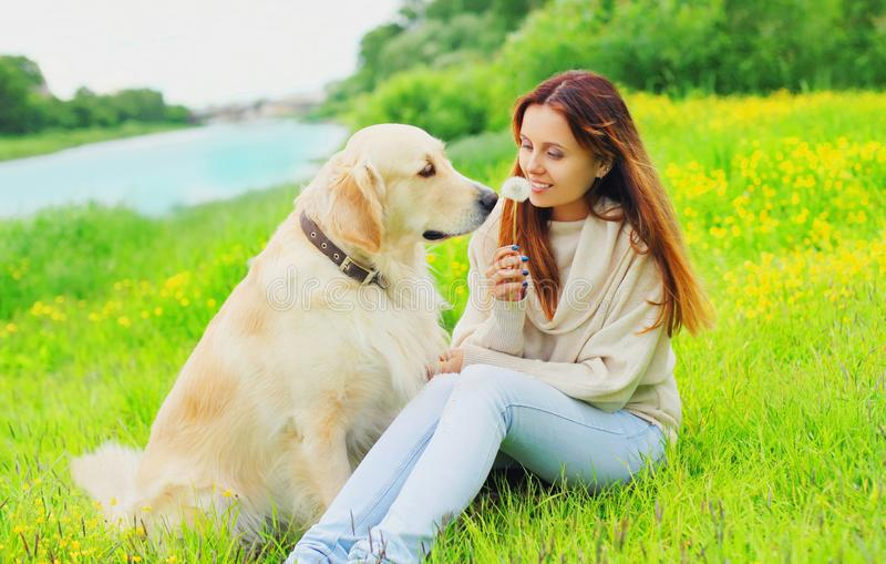 Happy smiling owner and Golden Retriever dog together on grass in summer royalty free stock photo