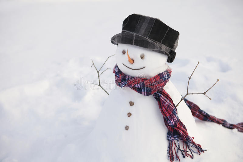 Happy snowman in field royalty free stock photography