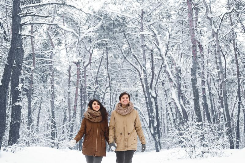 Happy Spouses Walking Holding Hands In Winter Forest royalty free stock image