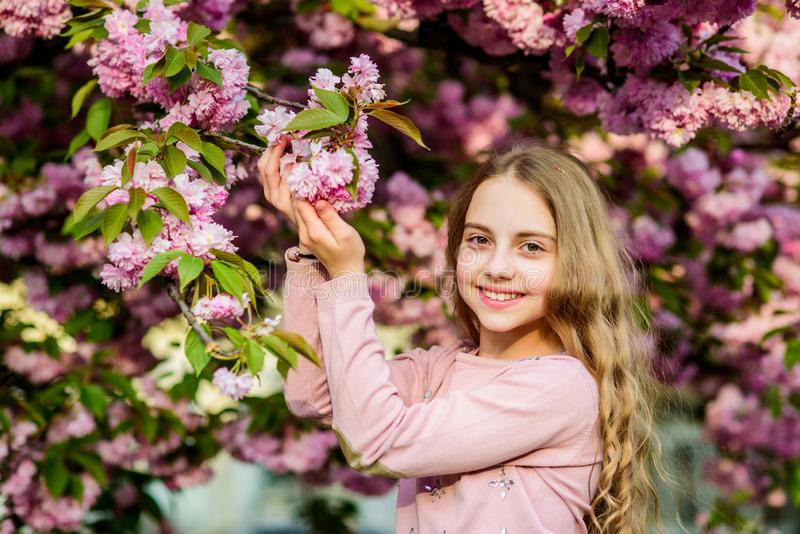 Happy spring vacation. Park and garden. Girl little child in spring flower bloom. Enjoy smell of tender bloom sunny day. Sakura flower concept. Gorgeous flower stock photo