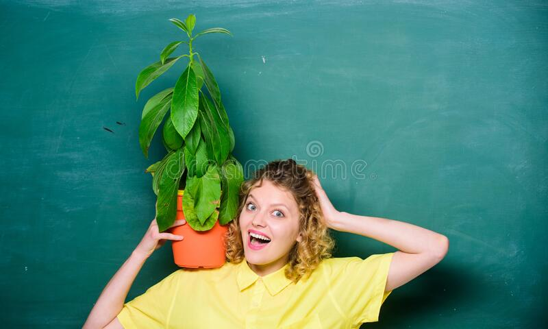 Happy student girl with plant at blackboard. tree of knowledge. school learning ecology. teacher woman in glasses at stock image