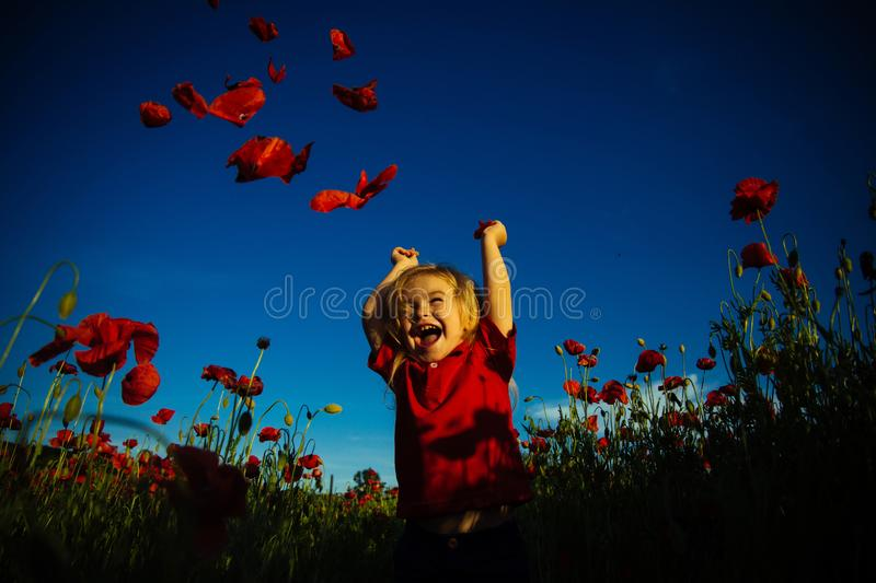 Happy summer. Child in poppy field. Kid with red flowers nature. Happy walk. stock photography