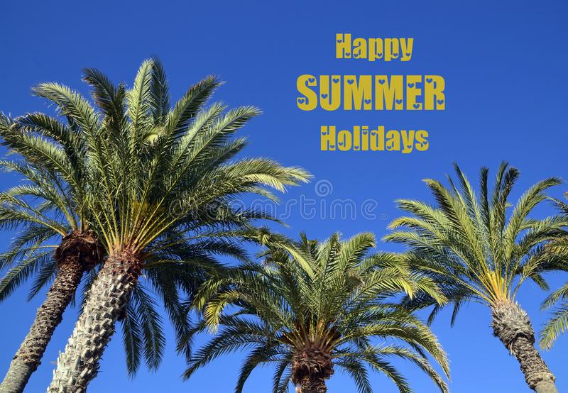 Happy Summer Holidays greeting card with tropical palm trees on a blue sky background.Summertime. royalty free stock photography