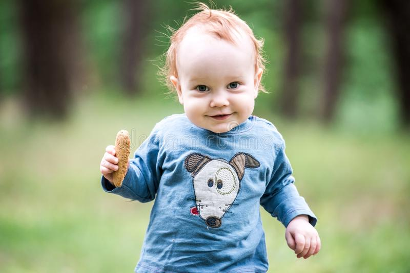 Happy sweet toddler in forest stock photos