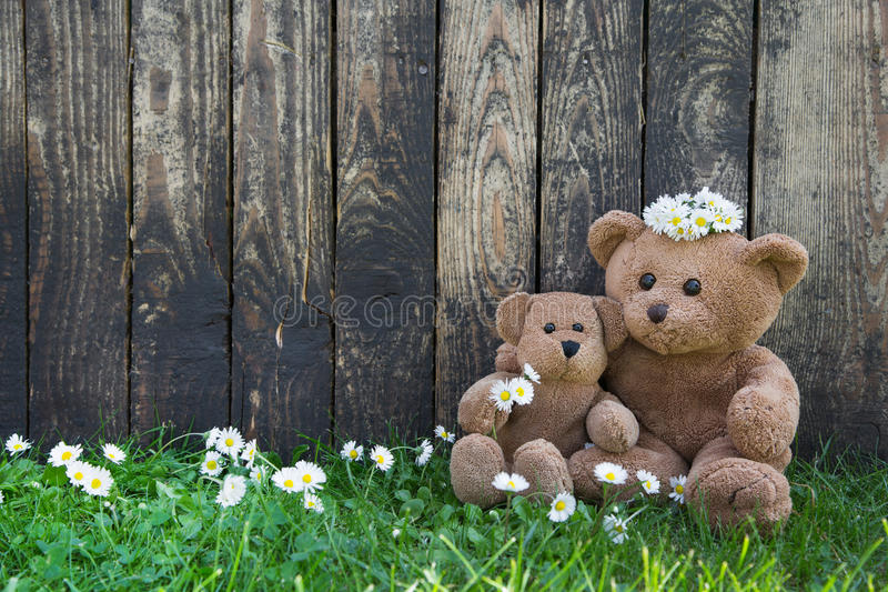 Happy teddy bears - mother and her baby on wooden background for royalty free stock photo