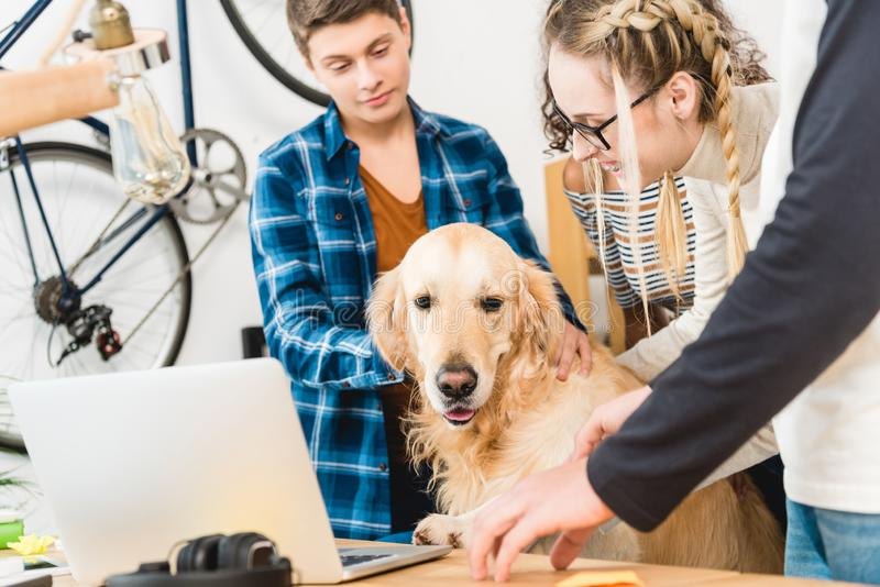 Happy teens palming dog sitting. On chair stock images