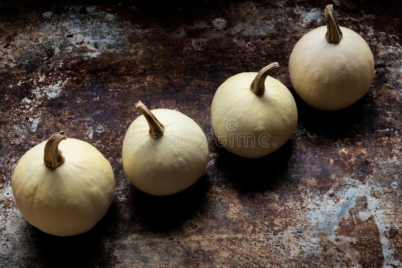 Happy Thanksgiving Background. Four white pumpkins on rustic metal background with copy space. Autumn Harvest. Happy Thanksgiving Background. Four white royalty free stock photography
