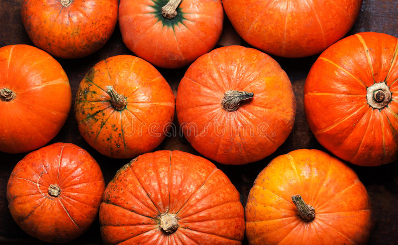 Happy Thanksgiving Card - pumpkins background top view stock images