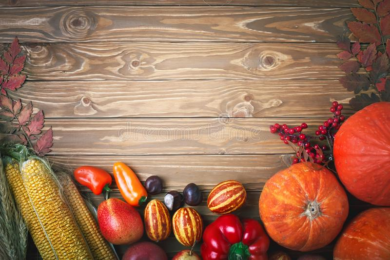 Happy Thanksgiving Day background, table decorated with Pumpkins, Maize, fruits and autumn leaves. Harvest festival. The royalty free stock photography
