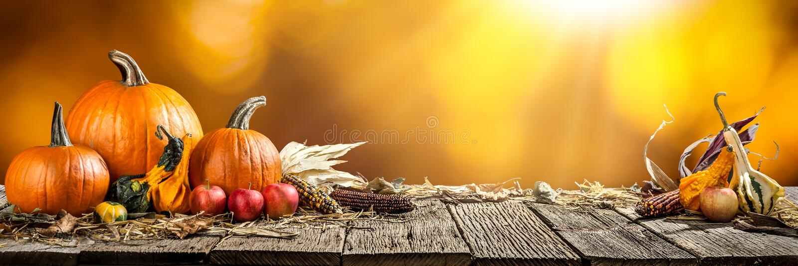 Happy Thanksgiving Day. Happy Thanksgiving With Pumpkins Apples And Corncobs On Wooden Table With Orange Background stock image