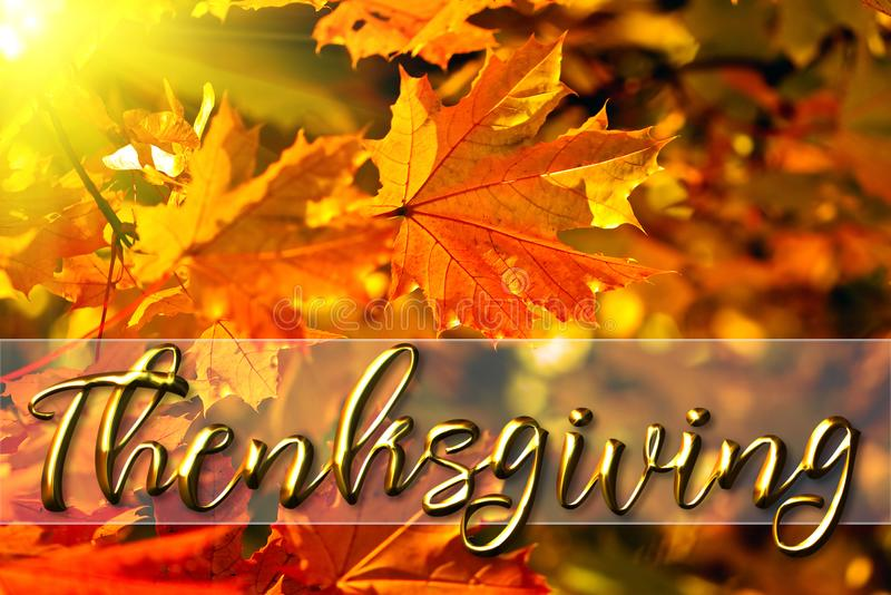 Happy thanksgiving greeting card message stock photo image of download happy thanksgiving greeting card message stock photo image of season fall 103976038 m4hsunfo