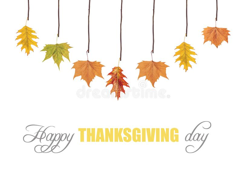 Happy thanksgiving and leaves hanging on tree branch royalty free stock images
