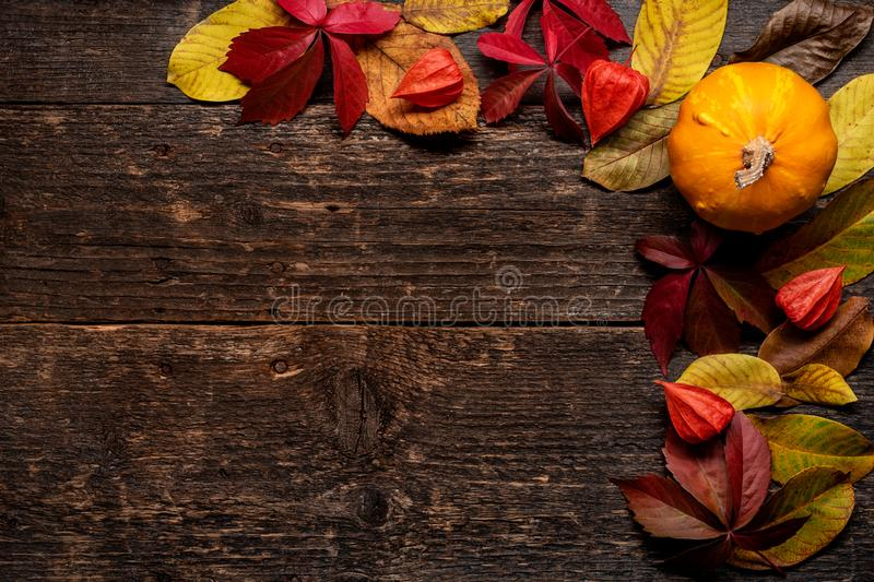Happy Thanksgiving. Pumpkin and fallen leaves on dark wooden background. Autumn vegetables and seasonal decorations. Autumn Harvest and Holiday still life royalty free stock images