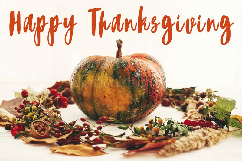 Happy Thanksgiving text,  greeting sign on pumpkin in autumn wreath of fall leaves, red berries, acorns, anise, nuts, autumn stock photography