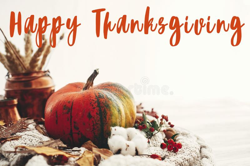 Happy Thanksgiving text,  greeting sign pumpkin with fall leaves, cotton, cinnamon, anise, acorns, nuts, berries on white knitted stock photography