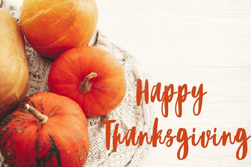 Happy Thanksgiving text,  greeting sign on pumpkins on white knitted sweater, flat lay. Hygge lifestyle, cozy autumn mood. Seasons royalty free stock photo