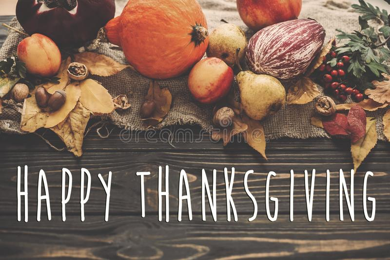 Happy Thanksgiving Text on Pumpkin, autumn vegetables with color royalty free stock photo