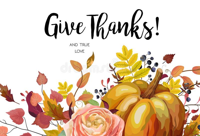 Happy Thanksgiving Vector floral watercolor style hand drawn Greeting card design: Autumn season Pumpkin pink ranunculus flower c vector illustration