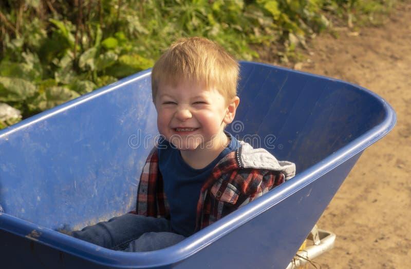 Happy three year old boy sitting in a wheelbarrow stock images