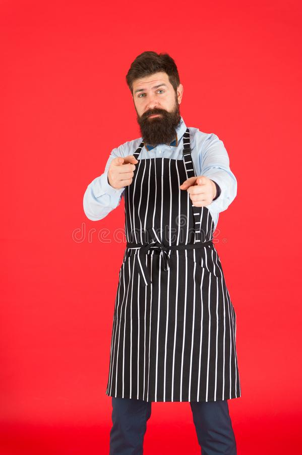 Happy to cook for you. Modern cafe concept. Cooking modern meals. Man with beard cook hipster apron. Hipster chef cook. Red background. Bearded man chef cooking stock photography