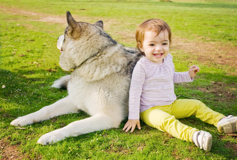 Happy toddler with dog royalty free stock images