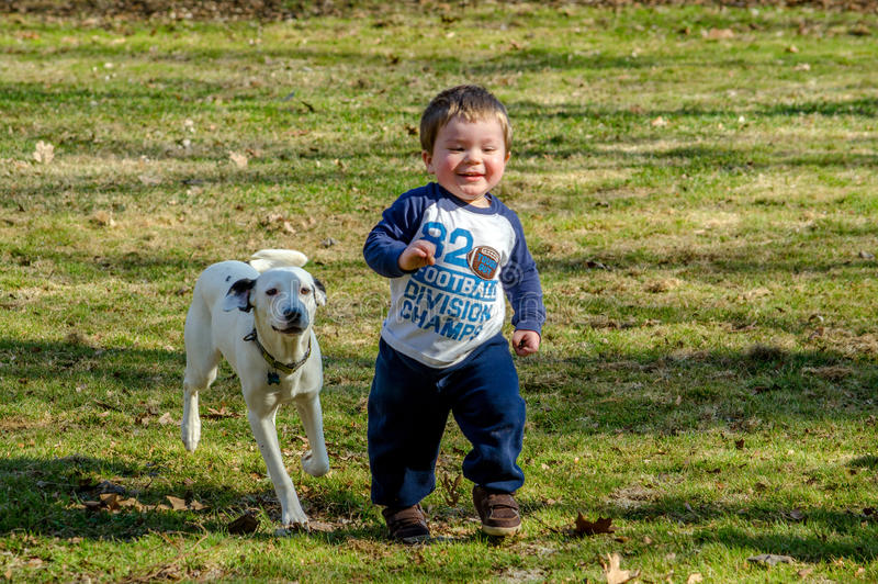 Happy toddler with dog stock images