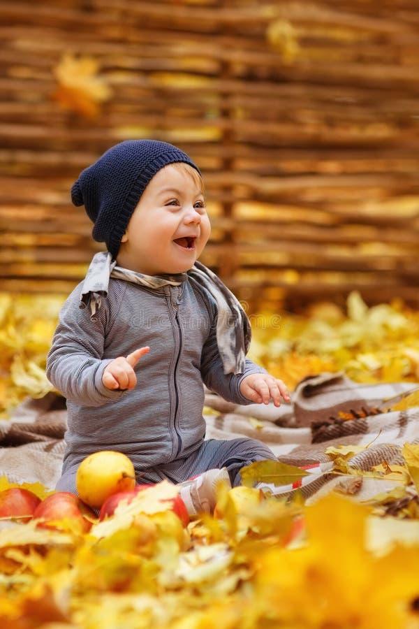 Toddler girl in the autumn park stock photos