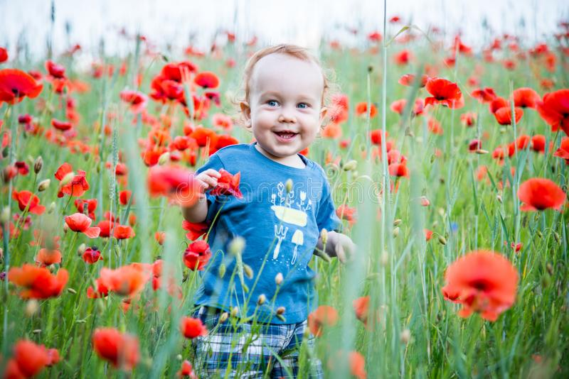 happy toddler smiling in a field of poppies stock photography