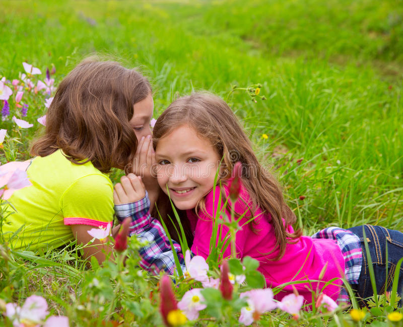 Happy twin sister girls playing whispering ear in meadow royalty free stock image
