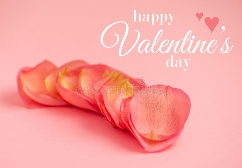 `Happy Valentine`s Day` messages on petals of pink roses on a pink background, happy valentine`s day theme. Petals of pink roses on a pink background, happy royalty free stock photo