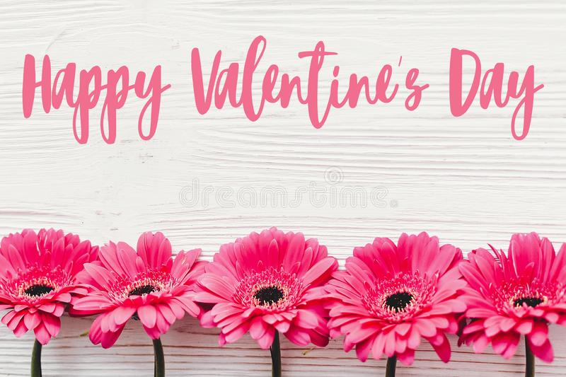 Happy Valentine`s Day text sign on pink gerbera on white wooden background, flat lay. Valentines day floral greeting card stock photo