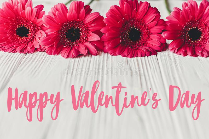 Happy Valentine`s Day text sign on pink gerbera on white wooden background, flat lay. Valentines day floral greeting card stock photos