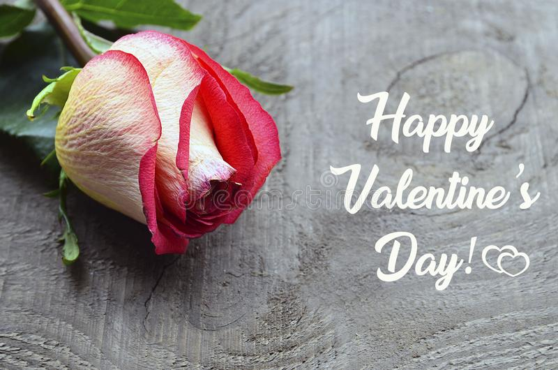 Happy Valentines Day greeting card. Beautiful pink rose on old wooden background.St Valentine`s Day or Love concept. stock photos