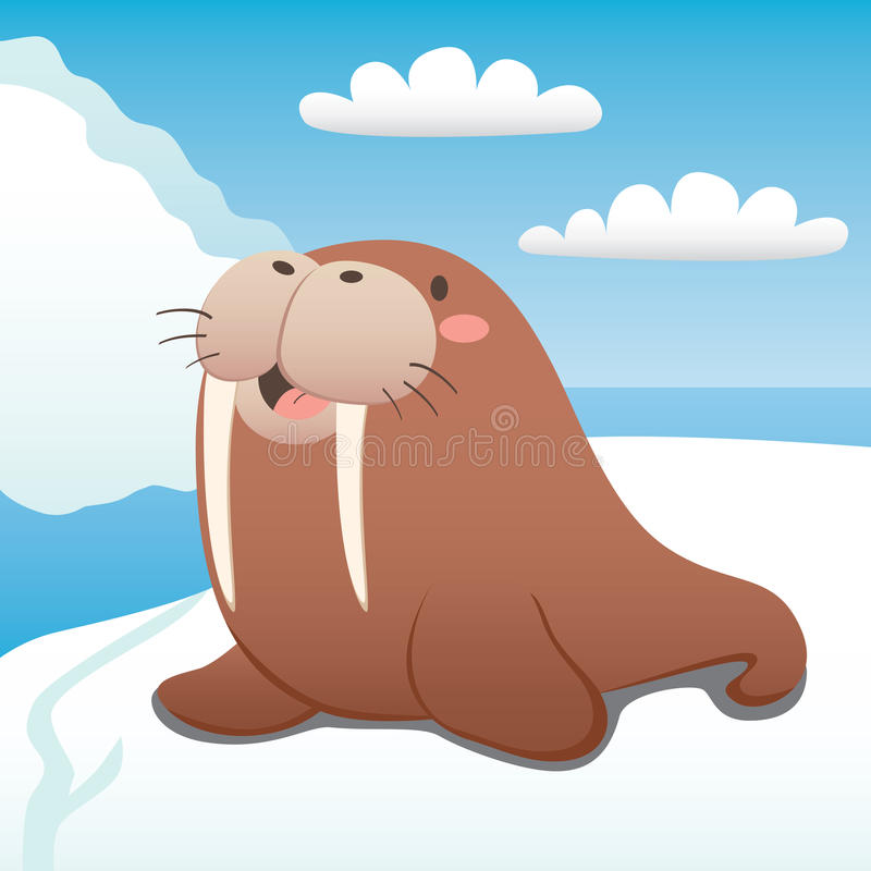 Happy Walrus Royalty Free Stock Images