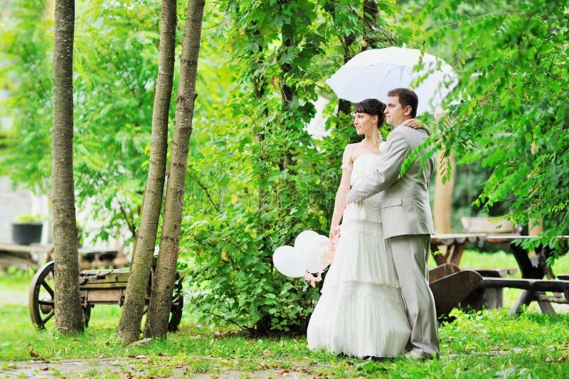 Download Happy Wedding Couple Royalty Free Stock Photos - Image: 25564608