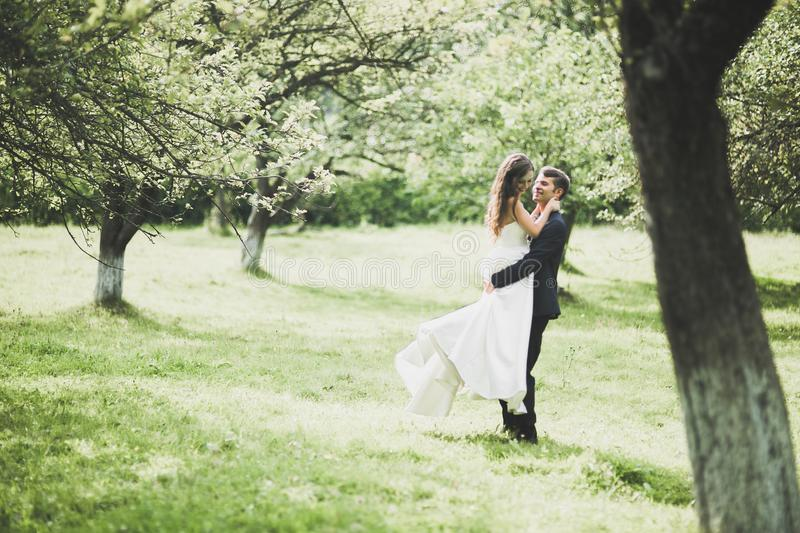 Happy wedding couple walking in a botanical park.  royalty free stock images