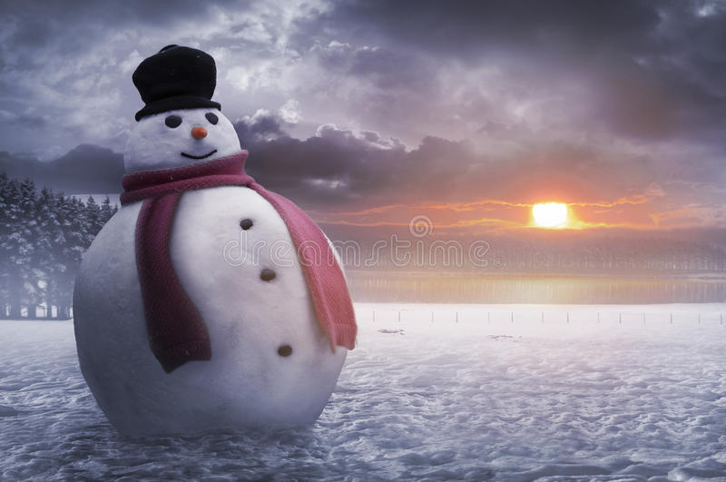 Happy winter snowman royalty free stock photo