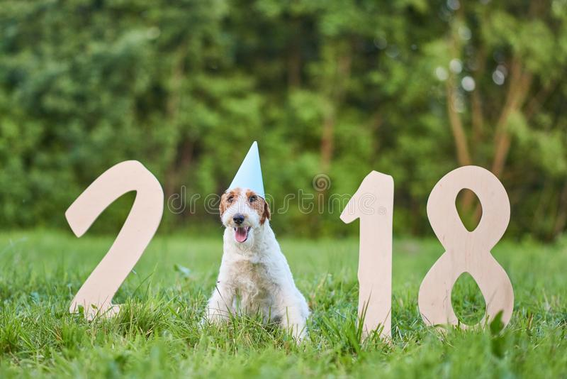 Download Adorable Happy Fox Terrier Dog At The Park 2018 New Year Greetin Stock Photo - Image of friend, outdoors: 101922458