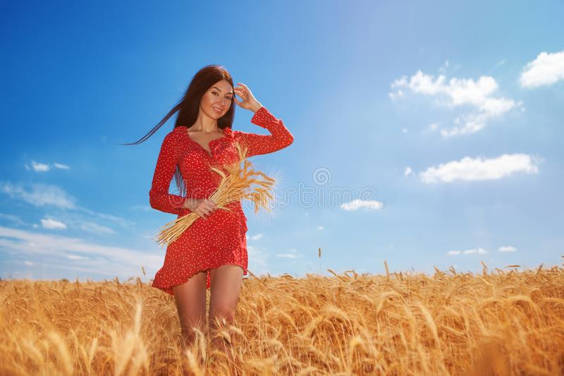 Happy woman enjoy the life in the field. Nature beauty, blue sky,white clouds and field with golden wheat. Outdoor lifestyle. stock images
