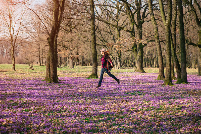 Happy woman enjoying the spring nature and crocus flowers. Happy woman enjoying the nature in the spring forest and feeling free among meadow of beautiful crocus royalty free stock photos