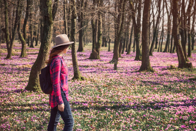 Happy woman enjoying the spring nature and crocus flowers. Tender woman woman walking among beautiful landscape with purple carpet of blossoming crocus flowers royalty free stock photography