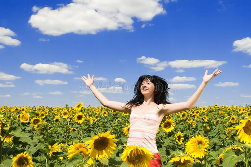Happy woman in the field stock photography