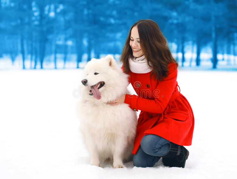 Happy woman having fun with white Samoyed dog outdoors in winter royalty free stock image