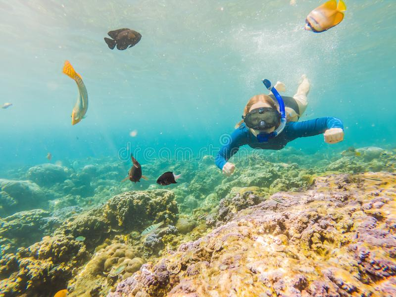Happy woman in snorkeling mask dive underwater with tropical fishes in coral reef sea pool. Travel lifestyle, water. Sport outdoor adventure, swimming lessons royalty free stock photos