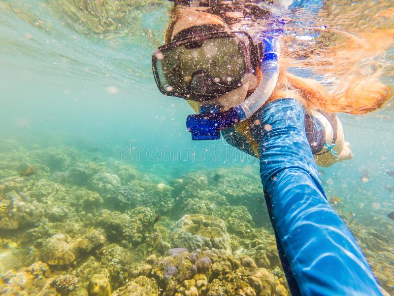 Happy woman in snorkeling mask dive underwater with tropical fishes in coral reef sea pool. Travel lifestyle, water. Sport outdoor adventure, swimming lessons royalty free stock image