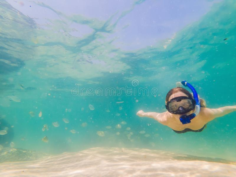 Happy woman in snorkeling mask dive underwater with tropical fishes in coral reef sea pool. Travel lifestyle, water royalty free stock photos