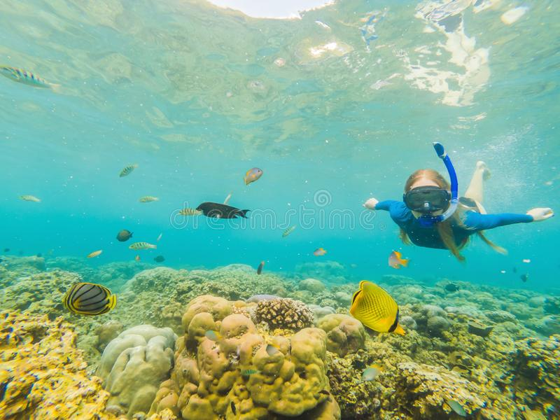Happy woman in snorkeling mask dive underwater with tropical fishes in coral reef sea pool. Travel lifestyle, water. Sport outdoor adventure, swimming lessons stock photo