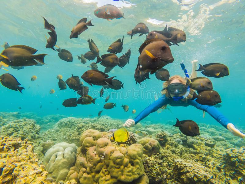 Happy woman in snorkeling mask dive underwater with tropical fishes in coral reef sea pool. Travel lifestyle, water. Sport outdoor adventure, swimming lessons stock image