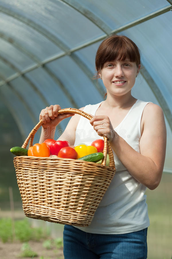 Happy woman with vegetables harvest. Happy young woman with vegetables harvest in hothouse royalty free stock image